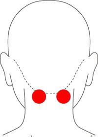 風地(脳の活性化)